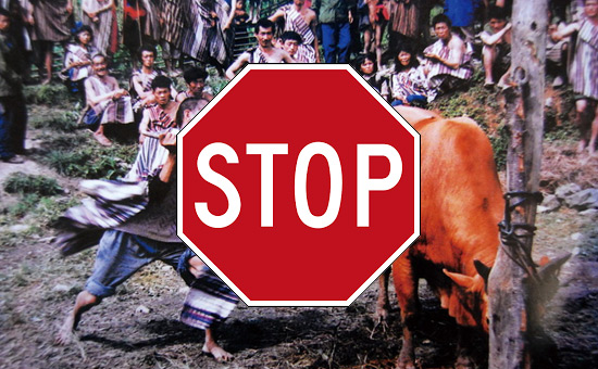 Towards Banning of Cow-Slaughter in India