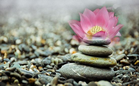Zentory (Zen story)