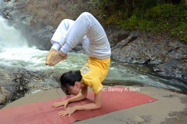 International Yoga Day - Common Yoga Protocol