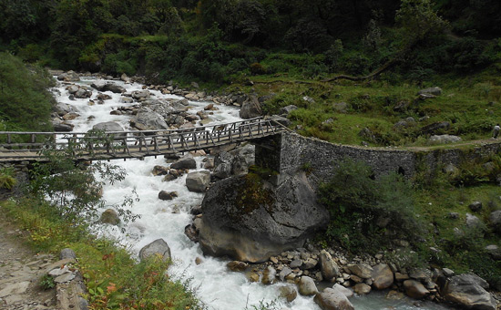 Trek to Pindhari/Kafni Glacier
