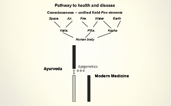 Exploring insights towards definition and laws of health in Ayurveda Global health perspective