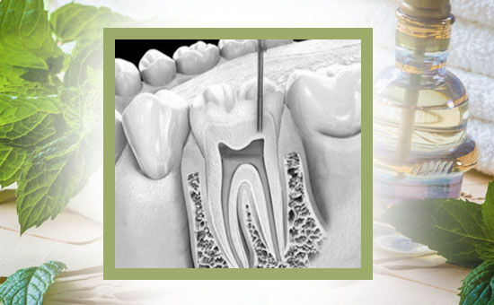 Natural Medicaments in Dentistry