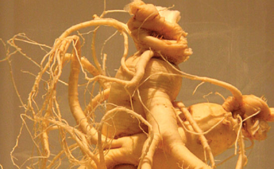 Ginseng The Oriental Wonder Drug