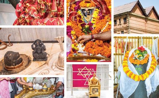 Royal Temples of Jammu