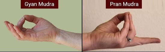Mudra Therapy during Pandemic-PRAN and UDAAN Mudra