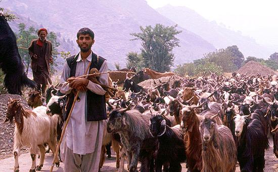 Kashmir solution - Chidambaram blissfully ignorant