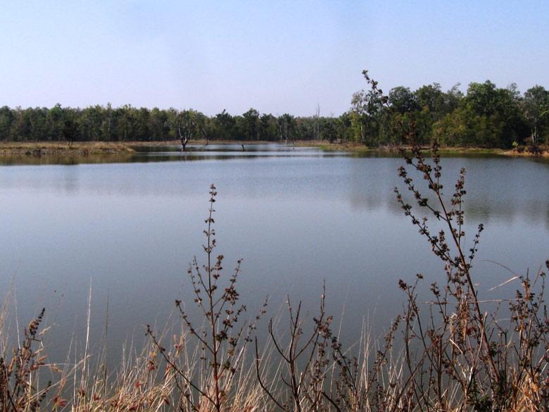 Barnawapara Mohoda Lake - view from the resort.