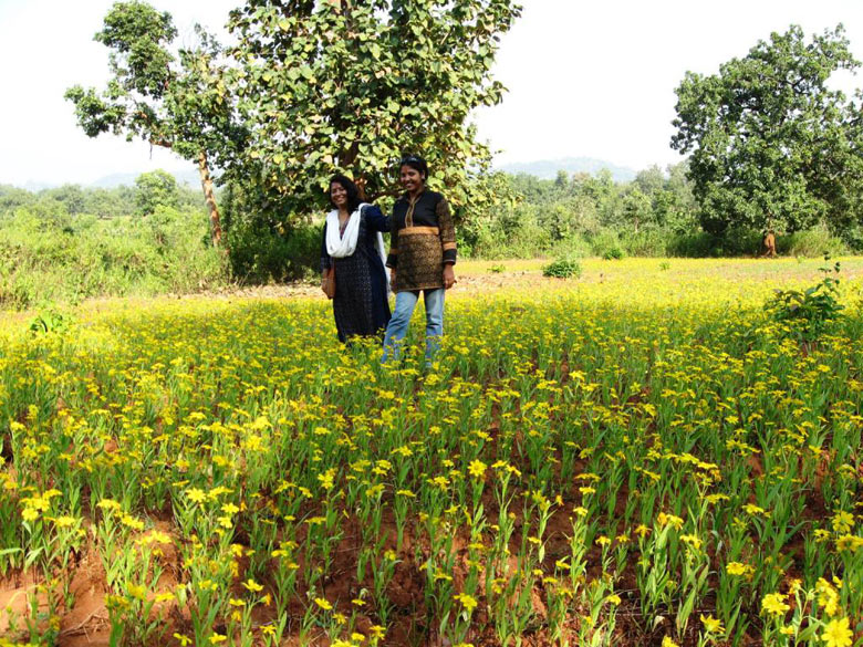 Jagdalpur - Mustard fields near the resort.