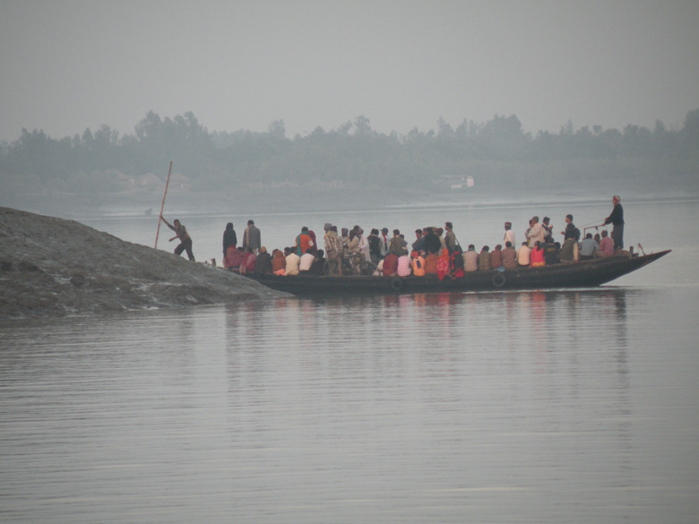 Sunderbans Reverie
