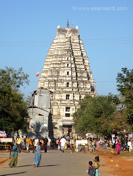 You see Hampi bazaar road behind which is east facing gopuram of Virupaksha temple. It is a 52m high.  Proluganti Tippa, a commander of Devaraya II (1422-46) built the gopuram. The temple complex assumed its present shape around 1520. Today the temple overlooks by Hampi bazaar lined with the remains of mantapas. The temple is dedicated to Lord Shiva.