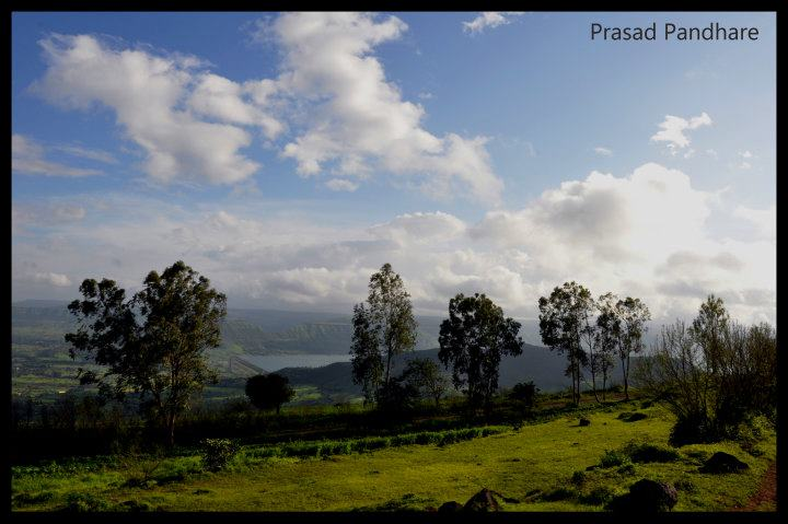 Another view. Coastal Maharashtra during the monsoons are a nature lover``s delight.