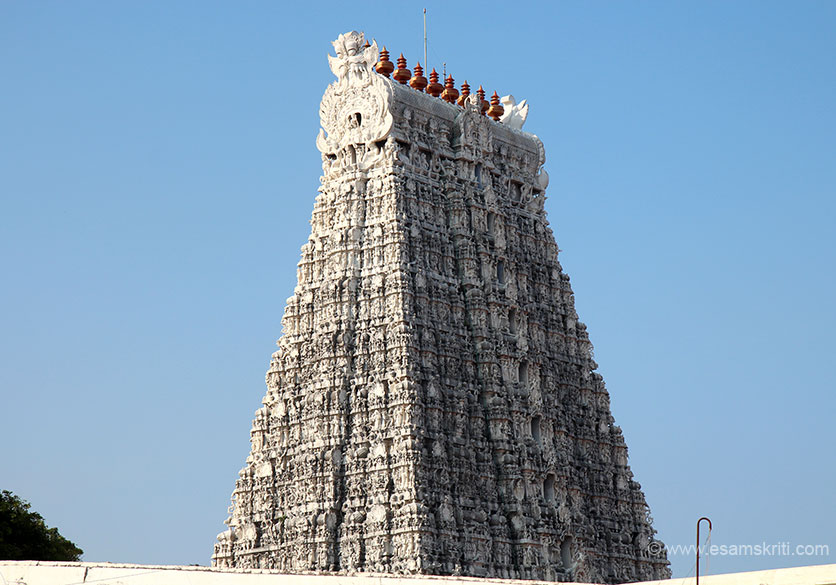 "View of Rajagopuram. ""Mela Gopuram has nine storeys and it is about 137 feet high above Yalimattam, 90 feet long north to south and 65 feet broad east to west. At the top of the Gopuram the width is 20 feet and the length is 49 feet. To indicate that the Gopuram consists of 9 storeys there are nine Kalasams (sacred copper pots) at the top of the Gopuram."""