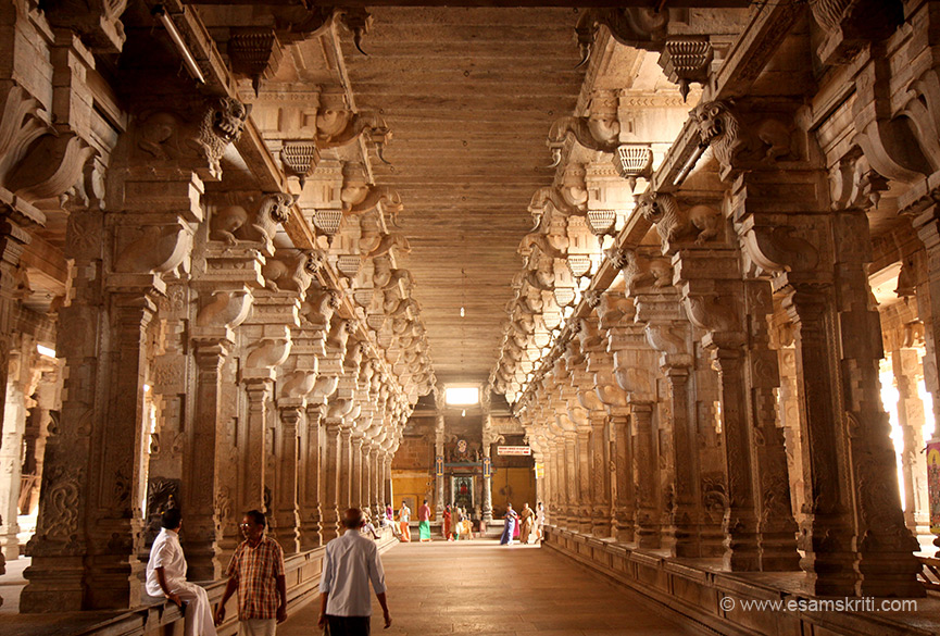 "Amazing alignment of pillars. ""Tere are hundreds of inscriptions inside the temple dating back to the rule of Chozhas, Pandyas and Hoysalas."