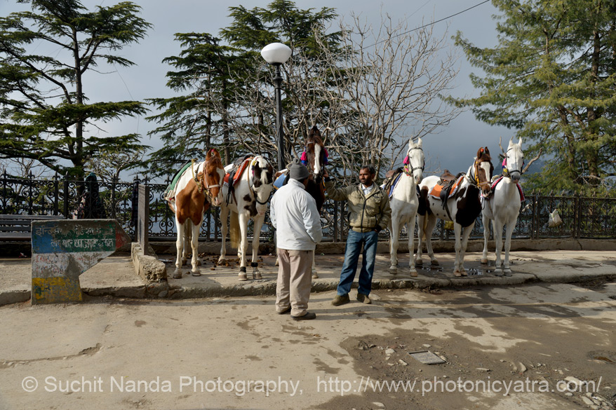"Horse riding is a popular recreation. From Shimla u can go to Sangla via Narkhanda. To see pics of drive  <a href=""http://www.esamskriti.com/photo-detail/Drive-Narkhanda-to-Sangla.aspx"" target=""_blank"">Click here to see pics</a>"