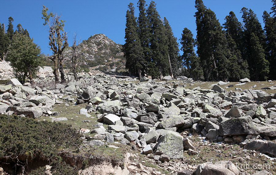 Deforestation and landslides is a problem faced in most hills, here as well.
