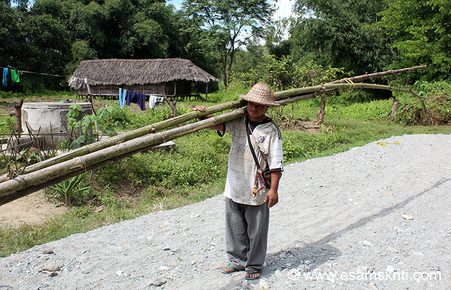 In a village around 1 hour from Roing. Villager cut bamboo tree and taking home. Copyright of all pics given by DIPRO lie with them.