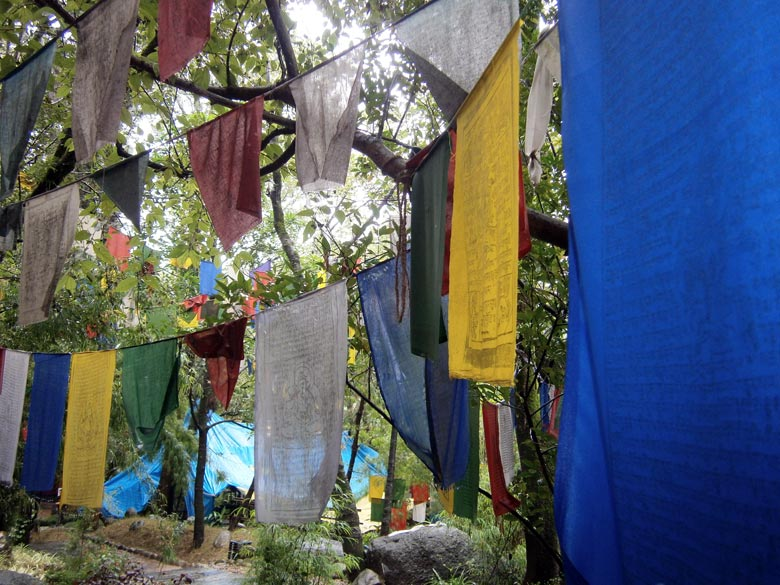 Prayer flags lend an auspicious touch to the surroundings. Make it a point to spend time in Mcleodganj which is the home to Dalai Lama and the Tibetan community.