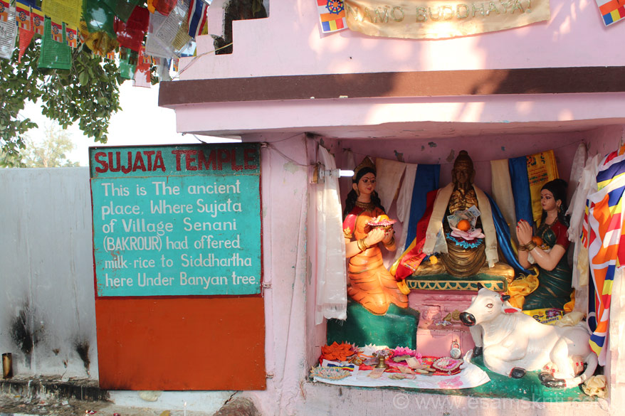 This is the point where Sujata offerred Buddha milk-rice. There is a small temple that you can see.