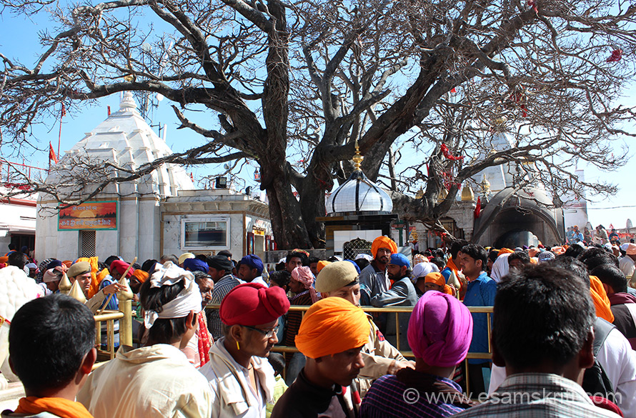 Since it was Hola Mohalla time place was very crowded. However, crowd was well managed by local police. On right is main temple. Photography inside the temple complex is not permitted. It took some doing to take this pic from a distance.