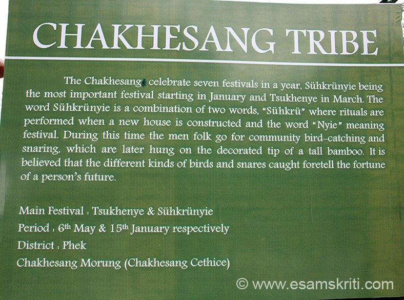 CHAKHESANG tribe. They celebrate seven festivals a year. Cultural events are DZULHA CIRO PHETA (salutation dance), TUKHRU-THURRO LIZZO (ode to the pied hornbill-great hornbill), DZULHA THUNYE PHETA (festival dance), DZULHA PHOSHU LIZZO (village founding folk song), MUCCI, MMHI MU DOTHO (yelling, exulting cry and stomping), DZULHA THURRI PHETA (war dance).