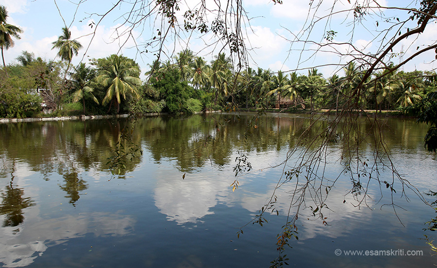 Water body outside temple. What I like about Tamil Nadu temples is the presence of numerous water bodies in and out of the temple. There surely must be a deeper spiritual reason. In today``s water starved times, it is a good form of water harvesting.