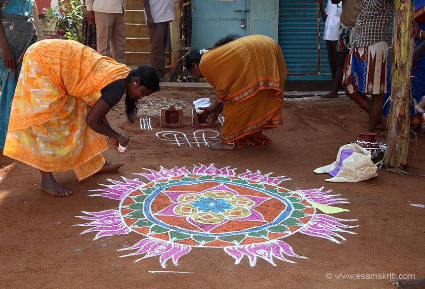 It was Pongal time. During the month of Margazhi (dec15-jan15) it is customary for women in Tamil Nadu to get up early in the morning and draw the KOLAM in front of the house and  decorate it with cow dung and pimkin flowers.