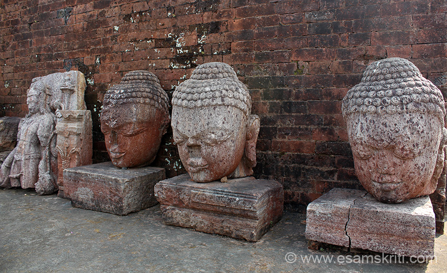 A series of stone images of Buddha.