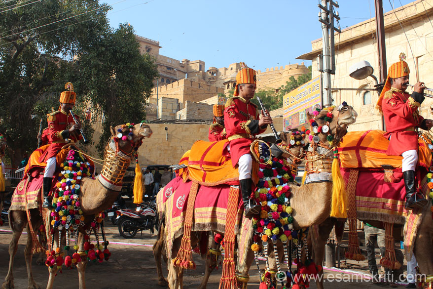 This is how a fully decorated camel looks. Pic is in Jaisalmer on day one of the Jaisalmer Desert Festival. These camels are used by the Border Security Force in the desert. In the  background is Jaisalmer Fort.