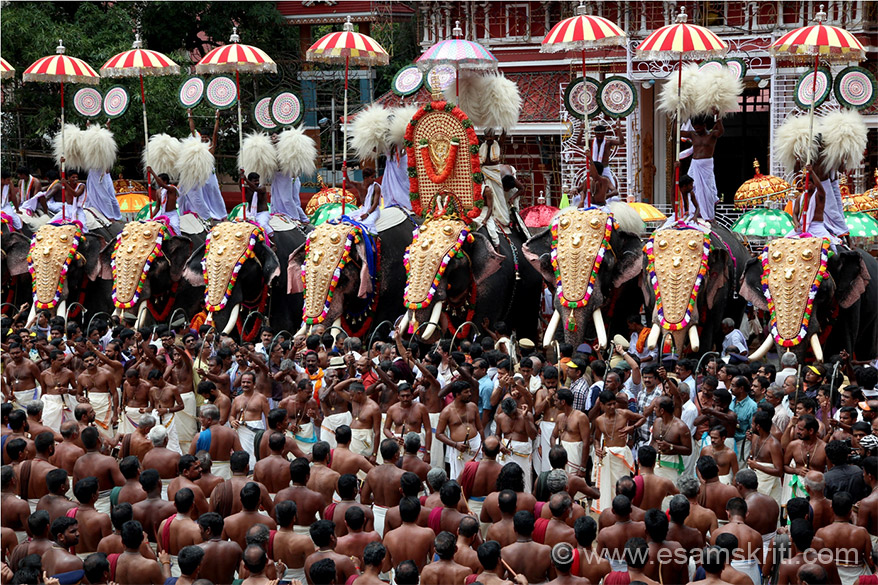 On puram day decorated elephants outside Paramekkavu temple. Music, being played by those standing in front of elephants, is called Chenda Melam or Percussion Rhythm.