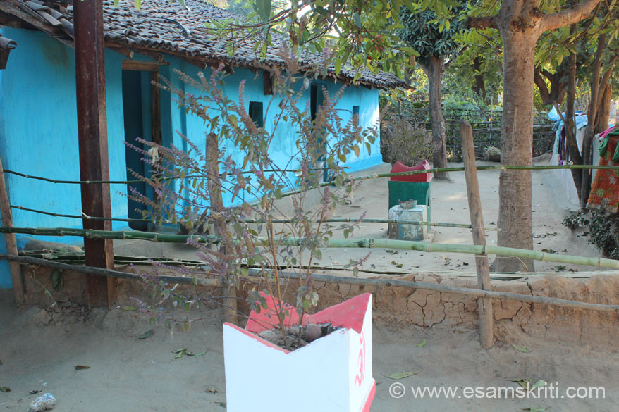 Saathi Samaj is in village Kumharpara. Found the village homes very clean. Every home has a Tulsi in its aangan as you see. Whilst visiting villages in Narainpur district also saw 