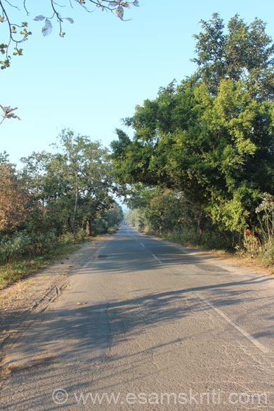 End December Dantewada was pretty cold since it is in forest area. All along my trip found excellent roads. This road is from Dantewada to Bailaila mines. These mines have one of the largest iron ore
