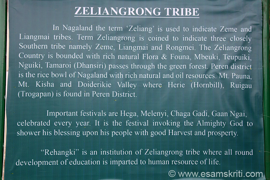 ZELIANG tribe. Cultural events are Song of Celebration, A folk song and dance, Good wishes for warriors before going to war, Harvest song, Song sung for young man and Folk song.