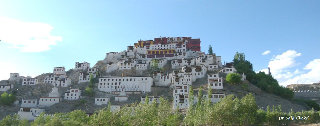 Thikse Gompa or Thikse Monastery is a Tibetan Buddhist monastery of the Yellow Hat (Gelugpa) sect, located on top of a hill, approximately 19 kilometres east of Leh in Ladakh, India. It is noted for its resemblance to the Potala Palace in Lhasa, Tibet and is the largest gompa in central Ladakh.