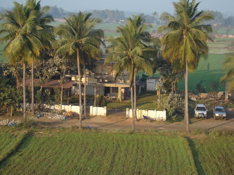 Farm house. How many of us city dwellers could have a house like this? Trees in front and rice fields behind.