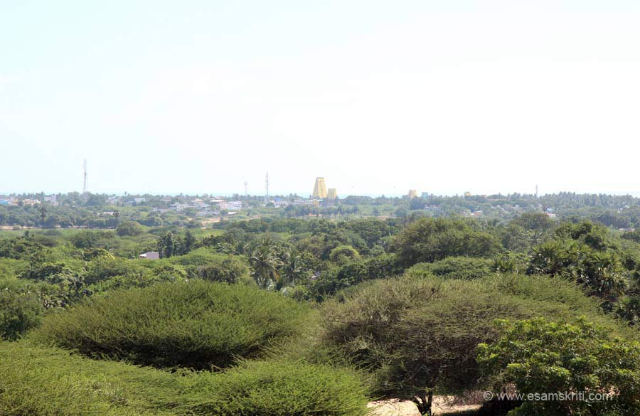 "A view of the gopurams of Rameshwaram Mandir from hillock. To see pics of Rameshwaram Temple <a href=""http://www.esamskriti.com/photo-detail/Rameshwaram-Temple.aspx