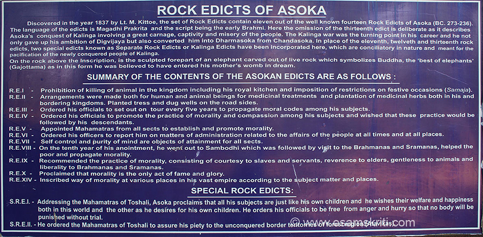 "Close up is Ashoka Rock Edict. To see pics of Nalanda University Bihar <a href=""http://www.esamskriti.com/photo-detail/Nalanda-University.aspx"" target=""_blank"">click here</a>"