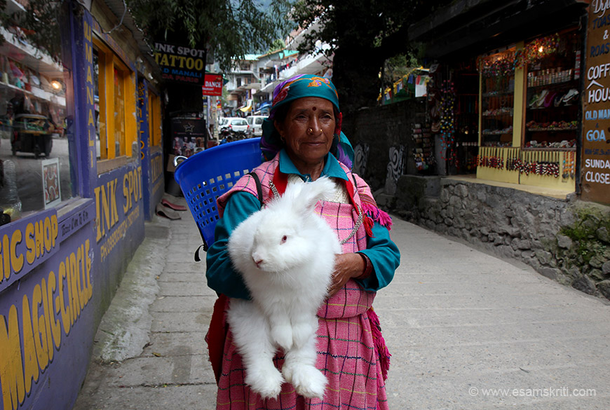 Old Manali - lady with a rabbit. She insisted I pay Rs 20/ to click her, did not leave me with a choice.