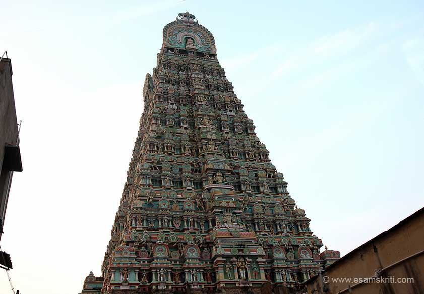 "North side view of gopuram. ""Rare and endangered species of plants have been conserved in the temple premises. Asoka (Saraca indica) a rare ornamental and medicinal plant that has found mention in the Red data book is well maintained."""