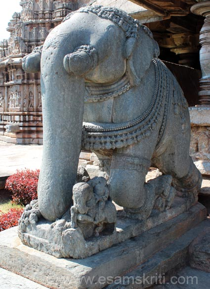 Elephants are found at the entrance of number of temples. A close up of the elephant that are at entrance to hall one left side. Note the fine work.