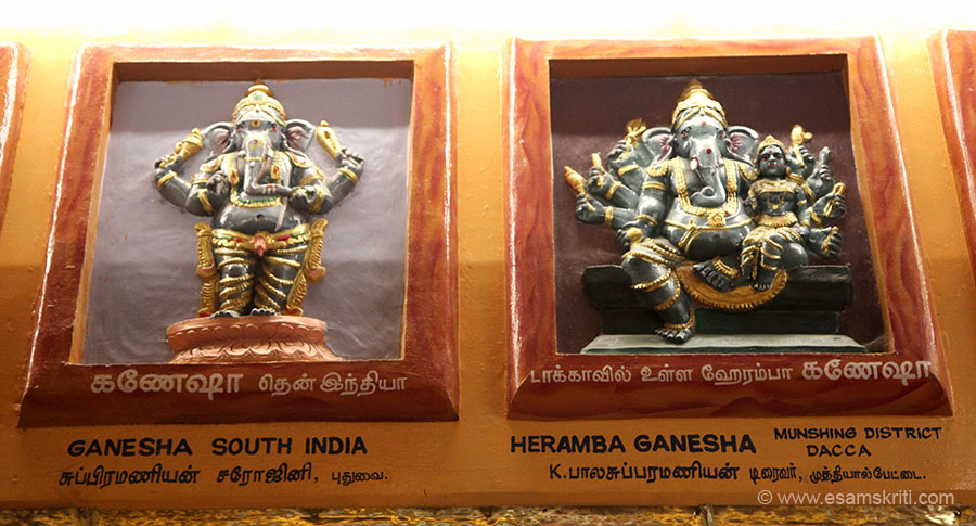 "Left is Ganesha South India. Right is Heramba Ganesha Dacca. To visit temple site <a href=""http://www.manakulavinayagartemple.com/