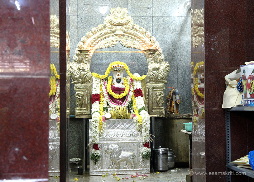 "Pic of deity Naganathar. (Naga = Snake ; Nathar = Bhagwan or Lord. Bhagwan Shiva is worshipped as Naganathar here). ""The presiding deities are Naaganaadaswamy and his consort
