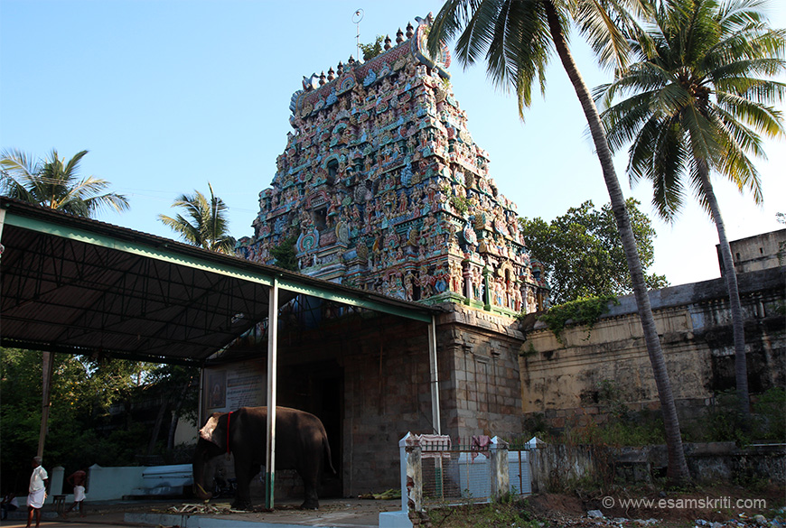The Mahalinga Swamy Mandir at Thiruvidaimarudur, 10 kms from Kumbakonam, is a powerful Shiv temple. It is a Mahalinga sthala (Big Linga shrine). Entrance gopuram. The lingam of