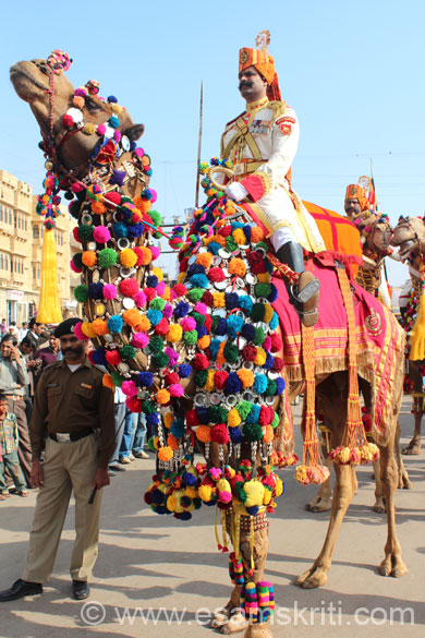 Camels are an important part of life in the desert. They are dressed up like brides, very colorful. The BSF carry themselves and camels in real style.