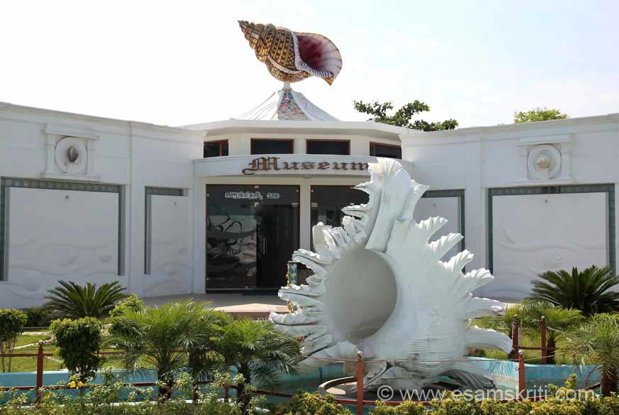 Driver Velu took me to the Indian Sea Shell Museum, never knew about it. U see entrance. Awesome is the word. Loved it. Museum has a collection of 40k rare and unique shells. We present some pics. Did not see the Aquarium and a store that sells pearl jewellery.