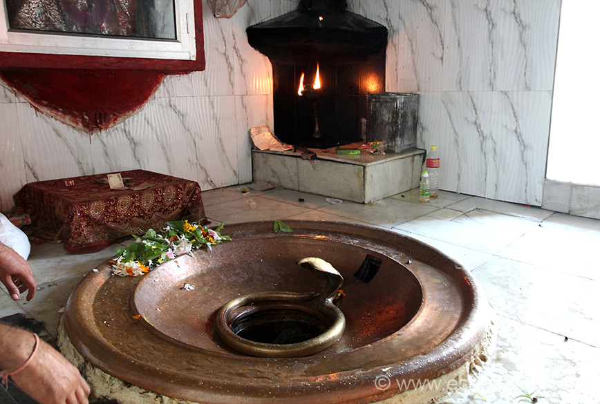 Inside the main temple. At one end is flame - devotees take mustard oil (if I remember correctly) to light flame. Felt very nice whilst doing so. You see a Kund in which is a Shivling. U can pour as much water as you want it never comes up but if you pour oil or milk it comes up.