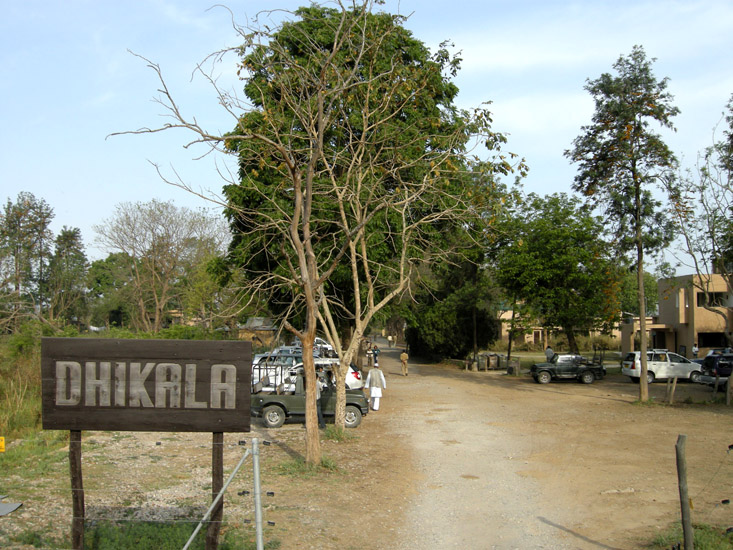 Dhikala, the favoured wildlife lovers`` haunt at Jim Corbett