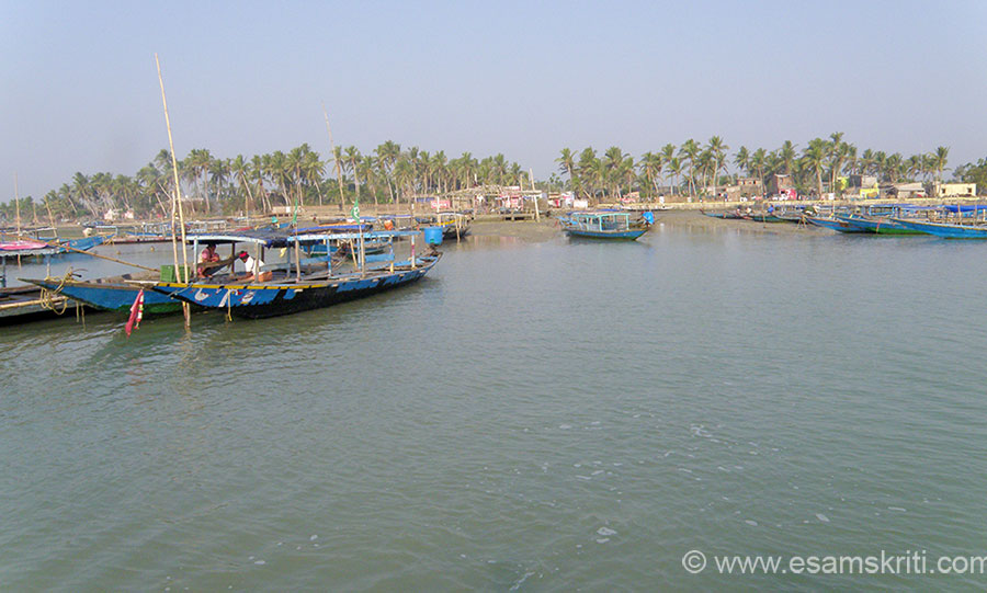 "View of boats and village. It was a lovely sunny morning, super weather. Excellent site on Chilika <a href = ""http://www.chilika.com/chilika_at_glance.htm"" target = ""_blank"" > Click here </a>"