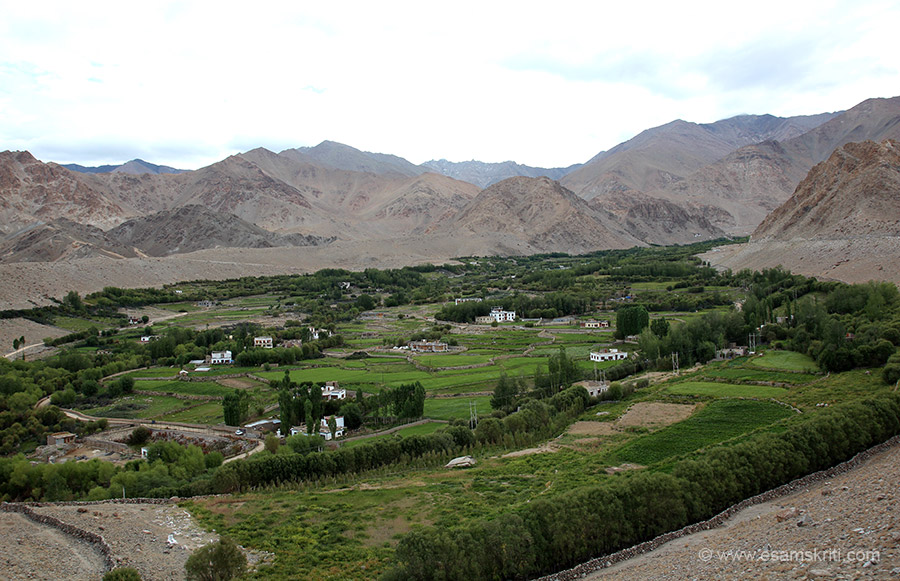 This is Ganglesh village about 30 minutes drive from Leh. Again happy to see so much greenery. At South Pullu is a police check post where your driver will enter details with the police. Just