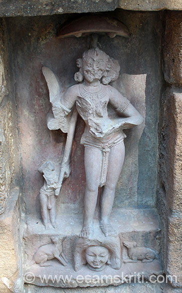 We present pics of some images. U see Katyayani no 3 holds a katari (knife) in one hand and a skull cap on the other. A female attendant is holding an umbrella over her head. The pedestal is having a dog and jackal.