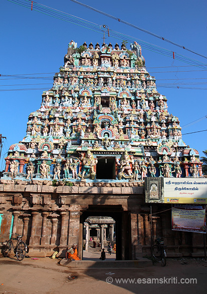 Back side view of one of the gopurams that take you to inner sanctum. The temple tree is Marudham Tree. Wish Tamil Nadu Tourism puts a board in English that helps identify and explain